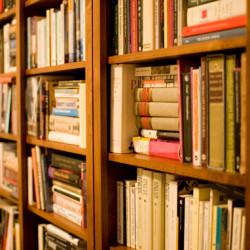 No one's reading my book - Bookshelf - Pyragraph