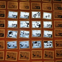 Animation cels at the Walt Disney Family Museum - Pyragraph