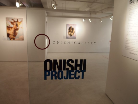 Onishi Project - Pyragraph