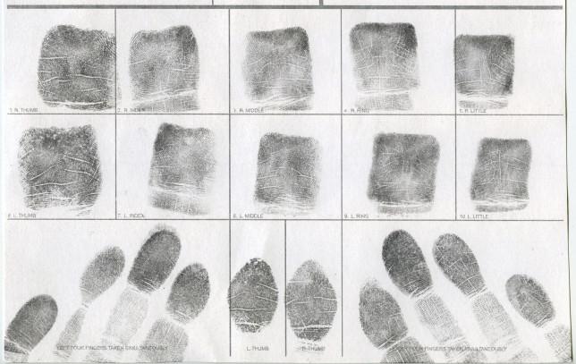 Dear Erin Hart fingerprints - Pyragraph
