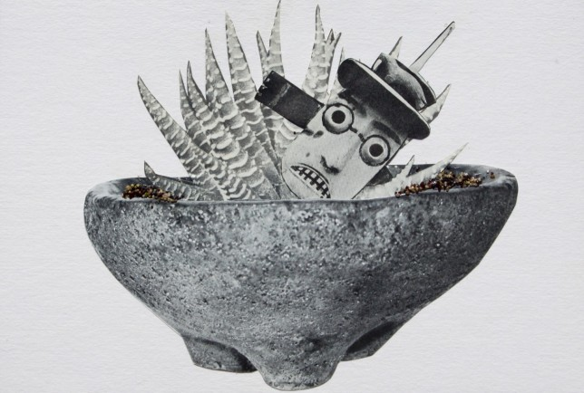 """""""Your child is a bonsai."""" Collage image courtesy of Alexandra Gjurasic."""
