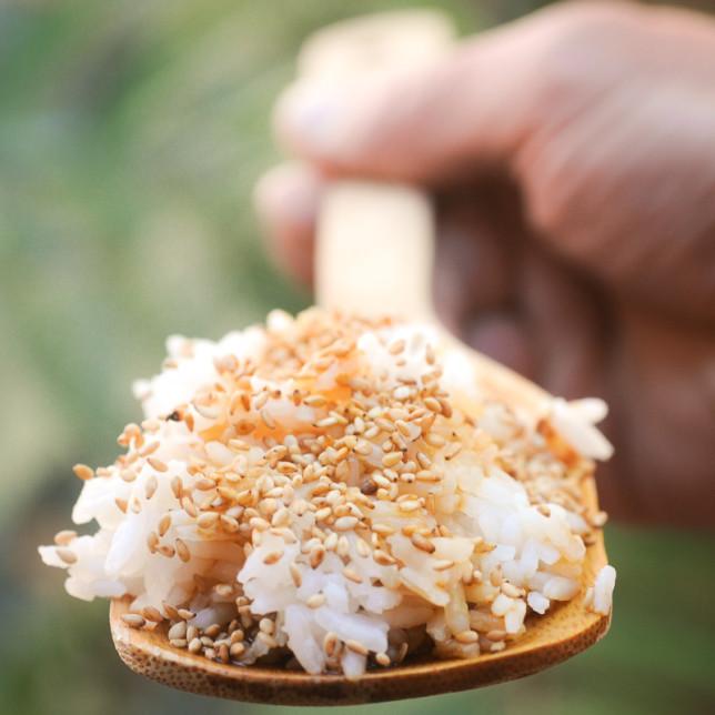 bamboo spoon – Albuquerque Food Photographer Clarke Condé – Pyragraph