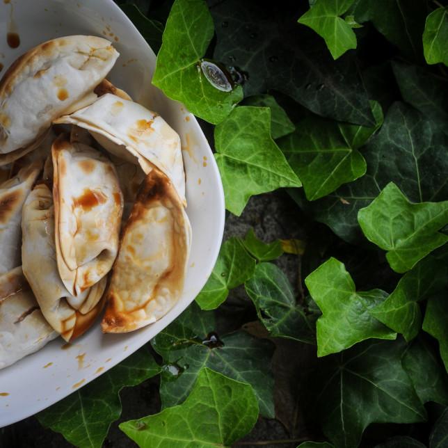 dumplings – Albuquerque Food Photographer Clarke Condé – Pyragraph