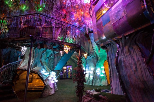Meow Wolf - Pyragraph