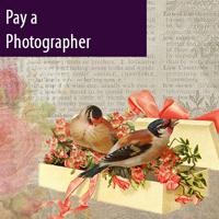 Registry-photographer