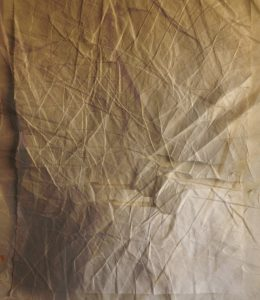 Family Skins by Danila Rumold - Pyragraph