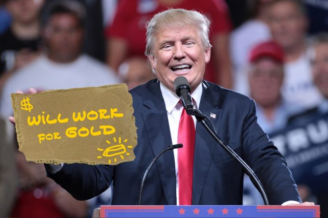 Will Work for Gold - Pyragraph