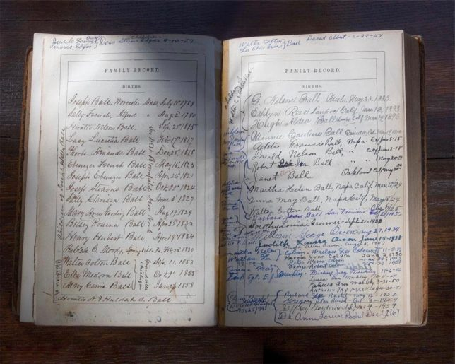 Family history bible - Pyragraph