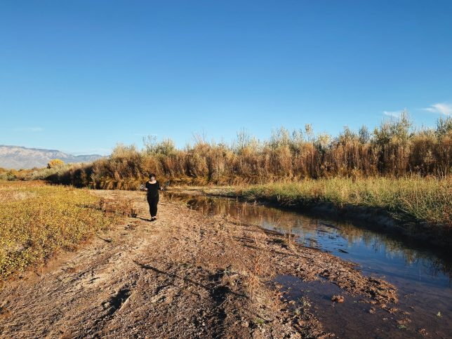Photo of a sandy brown shore curving away towards mountains, green and yellow bosque plant life all around reflected in the surface of a line of water at right. A figure dressed in black walks toward the camera. - Pyragraph